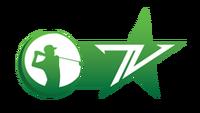 Golf TV logo VTVCab 23.png