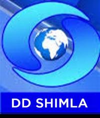 DD Shimla.png