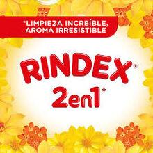 Rindex 2020.jpg