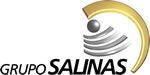 Gruposalinas logo.jpg