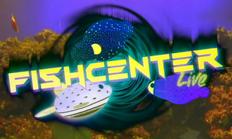 Fishcenter2020 (Late Spring-Summer)