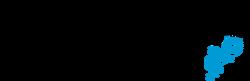 Submarino 1999 logo.png