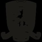 Middlesbrough FC logo (2015-2016, third)