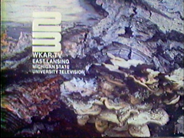 WKAR-TV