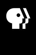 PBS (Alternative Vertical)