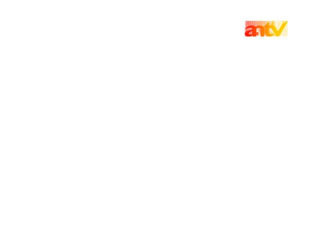 Antv/On-Screen Bugs