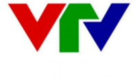 VTV Huế logo early 2011.png