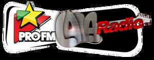 Pro FM Lala Radio.png