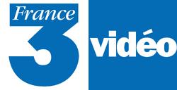 France 3 Vidéo Logo.png