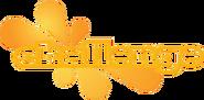 Challenge 2008