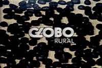 Globo Rural 1980.jpg