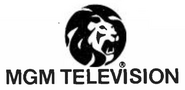 MGM Television 1980