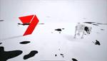 Channel7ID102Dalmations