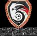 New Syria FA
