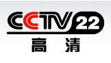 CCTV-22.png