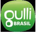 Gulli (Brazil)