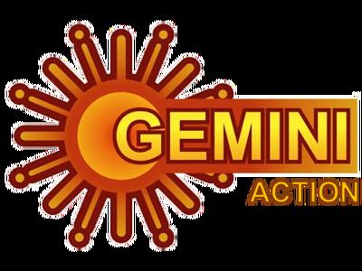 Gemini Action.png
