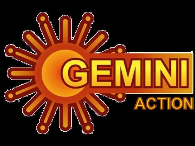 Gemini Action