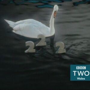 BBC2WalesSwan2015.jpg