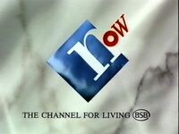 Bsb now ident 1990a