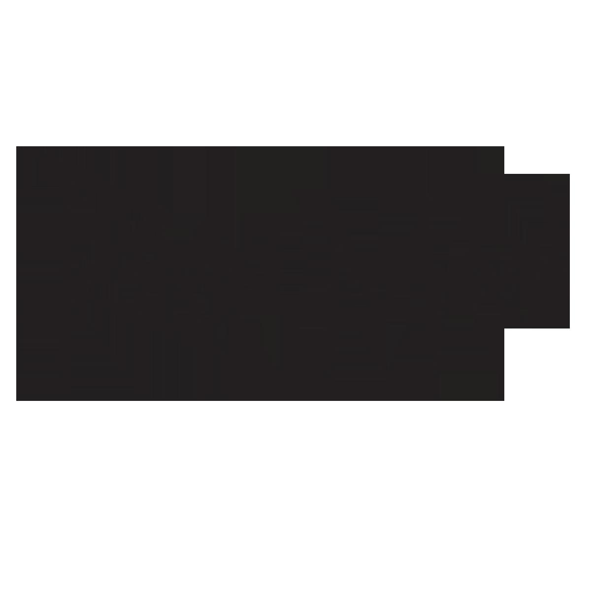 Rain Man (musician)