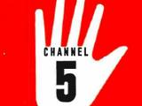 WNEM-TV