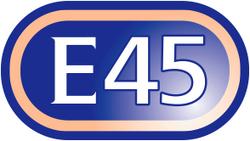 E45 1.png