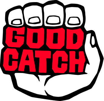 Good Catch (video game company)