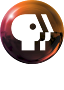 PBS 2009 logo vertical (Orange, White text)