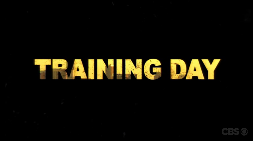 Training Day (TV series)