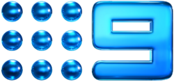 Nine Network (2009).png
