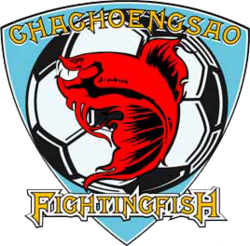 Chachoengsao FC 2008.png