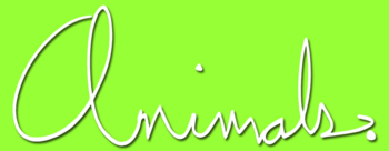 Animals-tv-logo.png