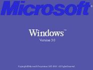 Windows 3.0 Beta Bootscreen (1990)