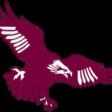 ManlySeaEagles Logo (ALT) (80s) (4).png