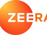 Zee Rang