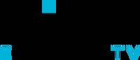 GINX 2020 Logo