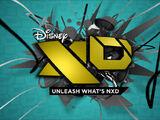 Disney XD/Logo Variations