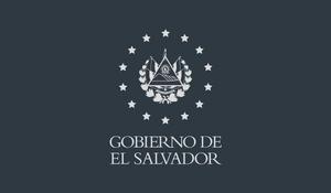 El Salvador Government 2019.png