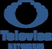 Televisanetworkslogo.png