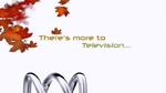 ABC2005idTVd