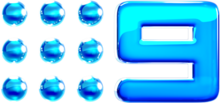 Nine2012 Glossed Logo.png
