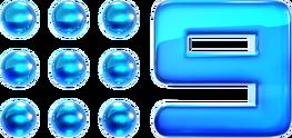 Nine2012 Glossed Logo.png