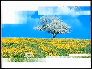 TVP Polonia 2003 ident.png