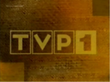 Tvp198b