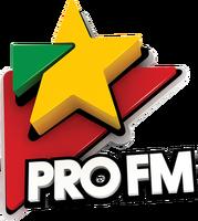 Pro FM (2010-2020)
