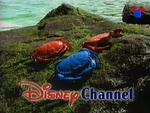 DisneyCrabs1997