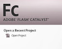 Adobe Flash Catalyst/Other