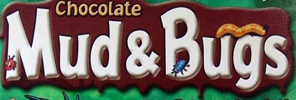 Chocolate Mud and Bugs