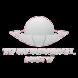TV MERIDIONAL NOVO LOGO.png